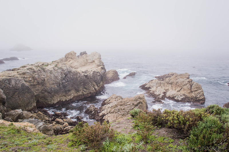 Point Lobos State Natural Reserve California