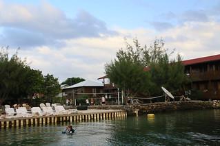 Underwatervison.  Utila, Honduras.