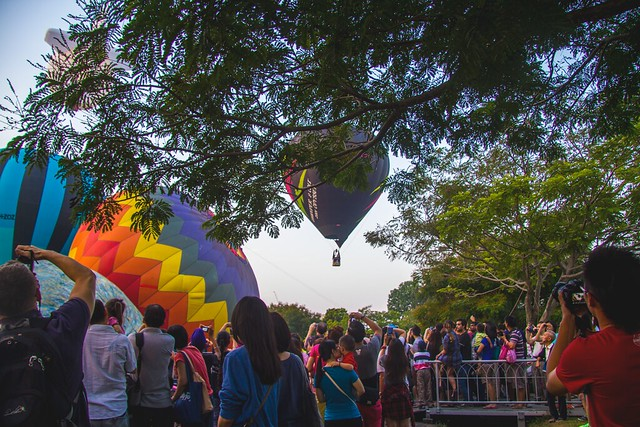 Hot air balloon festival 2015 via TinyBlackBird.com