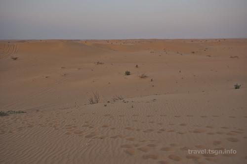 【写真】2014 世界一周 : ドバイ・砂漠(1日目)/2014-12-17/PICT6690