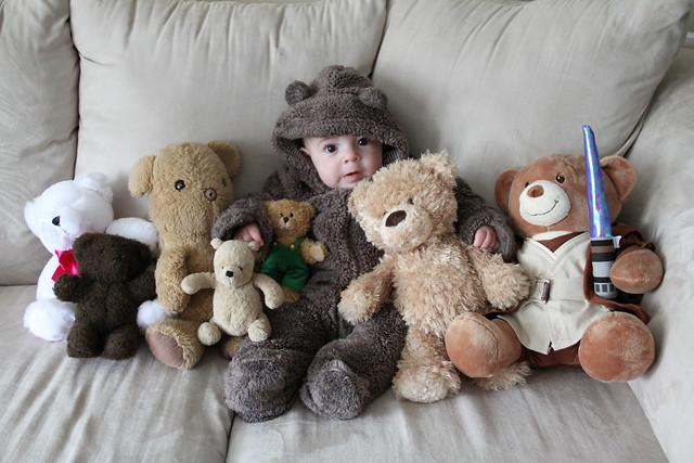 10.31.2014 :: benjamin bear-ito