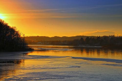 trees sunset lake reflection sonnenuntergang sundown træer solnedgang sø silkeborg spejling skyporn søhøjlandet langsø