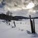 snowy by Heinzelmän