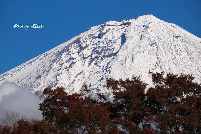 雪化粧の富士山 by Nakabo