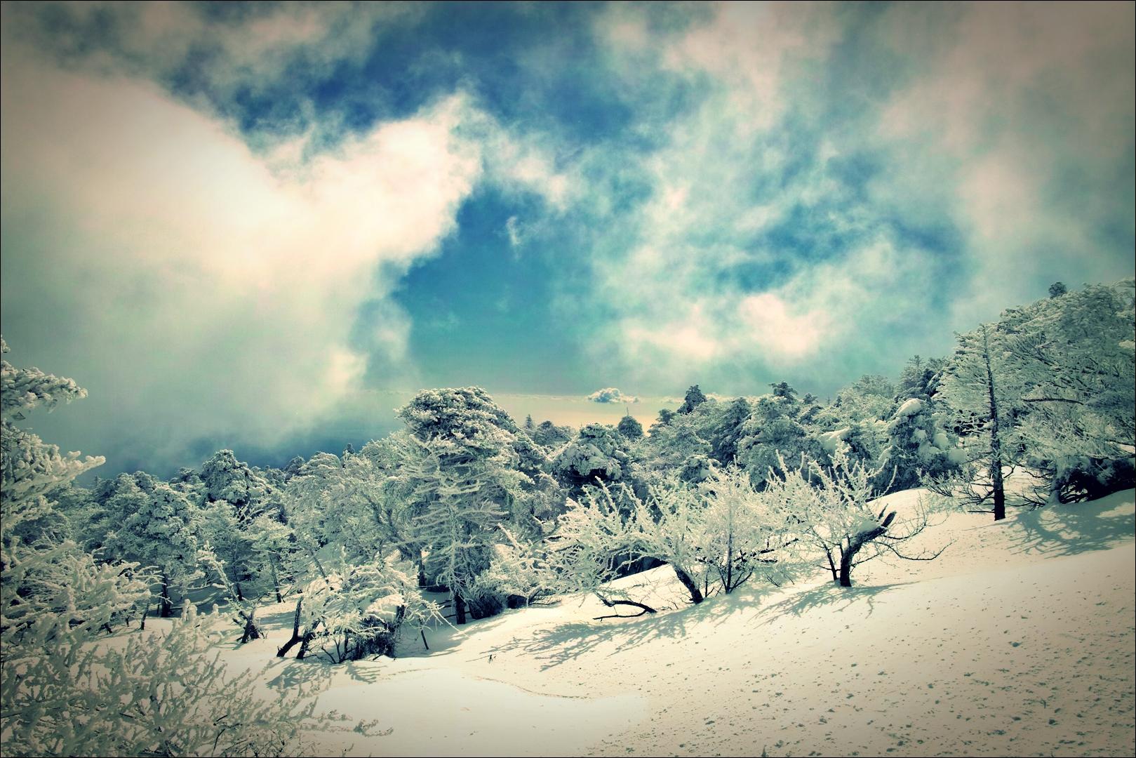 해피엔딩-'한라산 성판악 - 백록담 겨울 산행.'