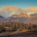 Chapelstile3 by Ken Oliver - Hull