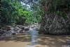 Jungle River Paredones