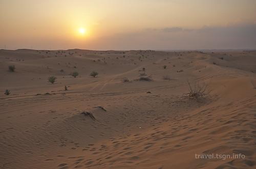 【写真】2014 世界一周 : ドバイ・砂漠(1日目)/2014-12-17/PICT6692