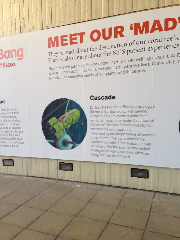 Cascade_BigBang