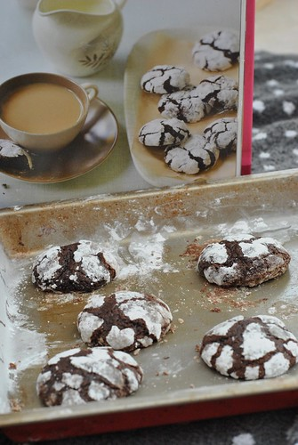 cocoa easy cookie recipe chocolate