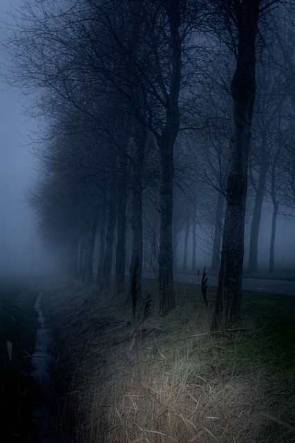 Agrusoft Webdesign Photopage - Dark Mist