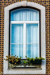 Window, Alfama , Lisbon