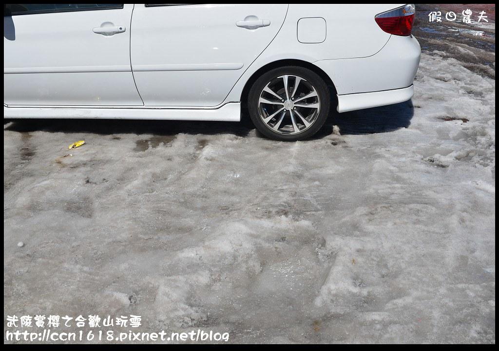 武陵賞櫻之合歡山玩雪DSC_5234