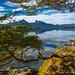 Framing Ensenada Bay by James Neeley