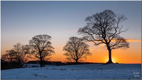 uk winter sunset england snow cheshire unitedkingdom panasonic stockport lymepark disley gh4 dmcgh4