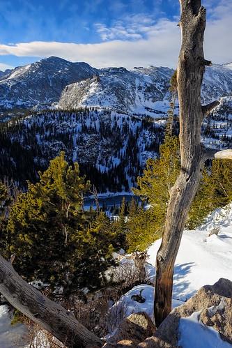 trees winter snow pine rockies nationalpark nikon colorado trail rockymountainnationalpark flattopmountain dreamlake d800e nikon1412mm