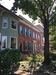 Front yards of houses, 19th Street NW, Dupont Circle, Washington, D.C.