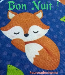 Boa Noite ! #blogauroradecinemadeseja  #goodnight #bonnenuit:zzz: #bonnuit:moon:#buenasnoches:heart: #buenanotte:kiss::kiss::two_hearts::heart: #cool  #cats #felinos #instanight