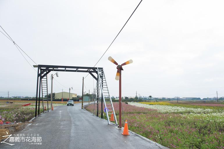 台南私藏景點-嘉義花海節 (14)