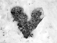 my frozen heart