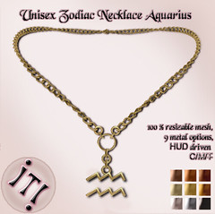 Unisex Zodiac Necklace Aquarius Image