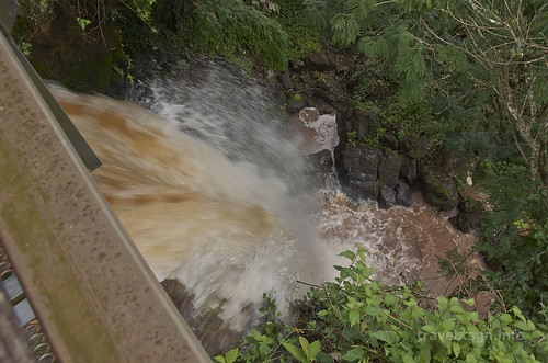 【写真】2015 世界一周 : イグアスの滝・アッパートレイル/2021-03-24/PICT7436