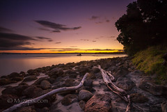 muzzpix-nz posted a photo:Facebook    | 500px  | WebsiteA bit of a different take on the usual fluffy type sunset ...