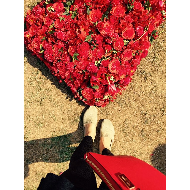 Roses are red. Violets are EW! @vivalogos 💃💃💃 #Ew #stopthismadness #fromwhereistand #workdiaries