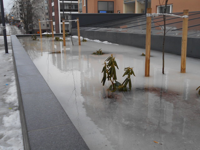 Poikkeuksellisen aikaisen kevään ja sulamisen erikoisilmiöitä: jäätä ja tulvaa istutusaltaassa Hämeenlinnassa 21.2.2015