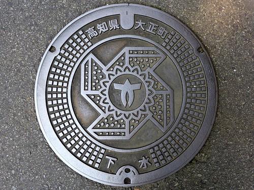 Taisho Kochi, manhole cover (高知県大正町のマンホール)