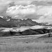Teton Range from National Elk Refuge by David C. McCormack