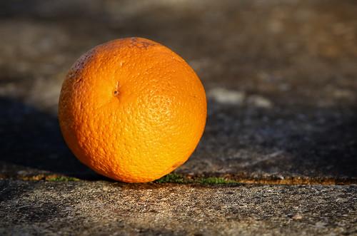 0025 Lost orange