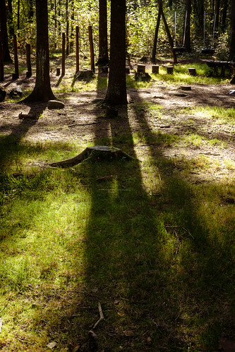 autumn denmark picnic danmark pwd efterår skovtur holstebro centraldenmarkregion vestreplantage poulwernerdam tclx100