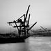 port of seattle by Tim Durkan