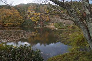 063 Tuinen Ryoan-ji temple
