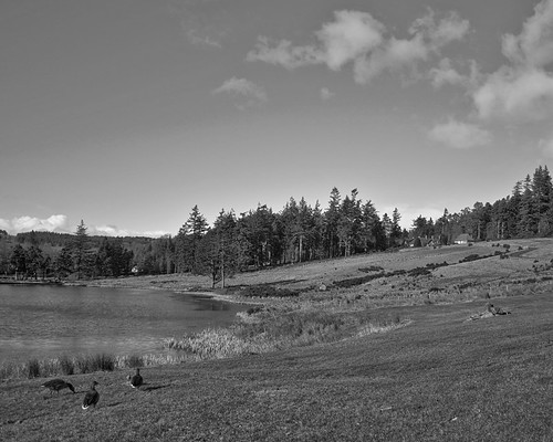 NT Cragside in Northumberland mono