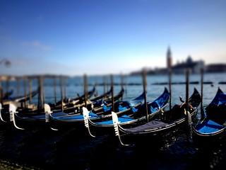 Gondolas Tiltshift, Venice, Italy, 2015