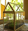 Miniature Glasshouse - Greenhouse(RS)