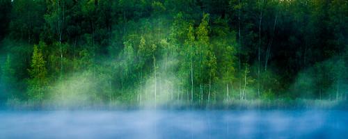 longexposure autumn lake tree fall leaves fog night forest suomi finland koivu evening leaf pond foggy august birch puu tampere metsä ilta syksy niihama yö järvi usva sumu lampi elokuu lehdet pitkävalotus