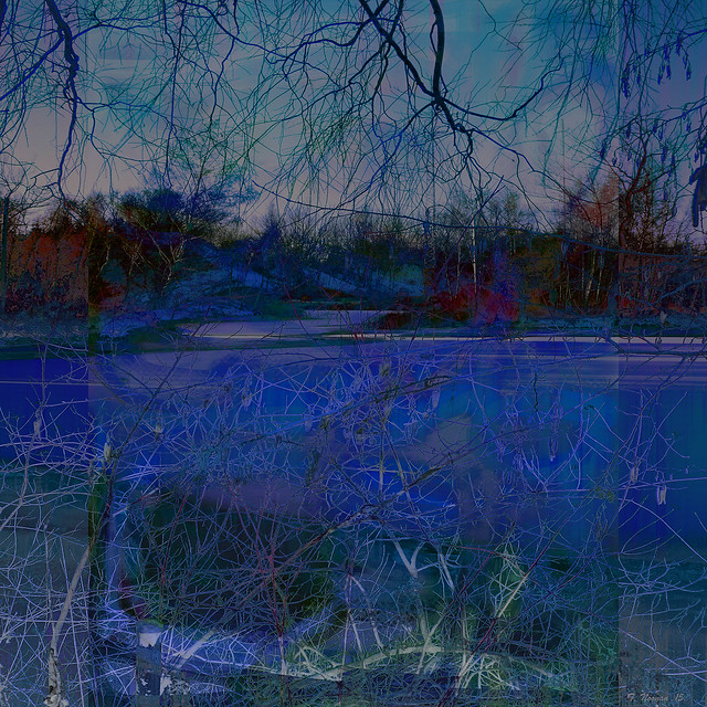 Tim Noonan - Blue Winter Night