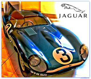 D Type - Jaguar