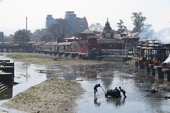 Pashupathi, Kathmandu, Nepal