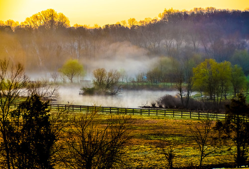 horse fog sunrise landscape virginia farm
