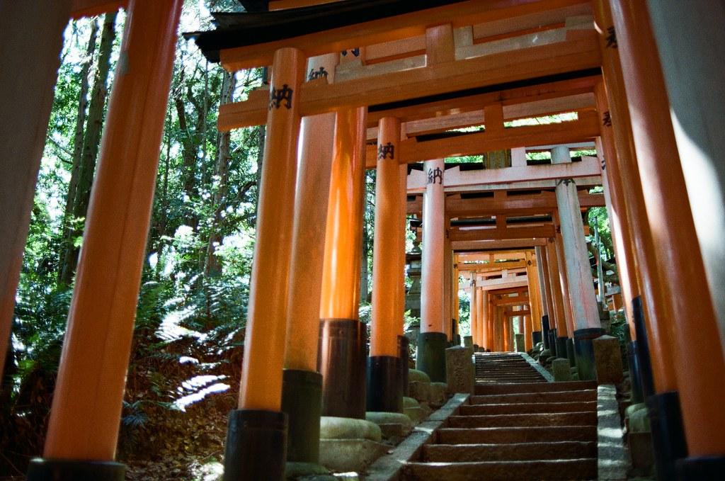 伏見稻荷 京都 Kyoto, Japan / Kodak ColorPlus / Nikon FM2 停了好段時間沒有把這段旅行的影像整理出來,時間也走的比我分享的還快。  繼續爬稻荷山,路上已經都沒有什麼人繼續爬了,那時候應該快到山頂,我一路上想說爬過了山頂應該可以實現什麼吧!  不過到後來想想,就只是單純的運動這樣。  Nikon FM2 Nikon AI AF Nikkor 35mm F/2D Kodak ColorPlus ISO200 0993-0035 2015/09/29 Photo by Toomore
