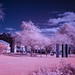 Lachine in InfraRed by Memory Trigger
