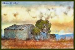 Digital painting su foto