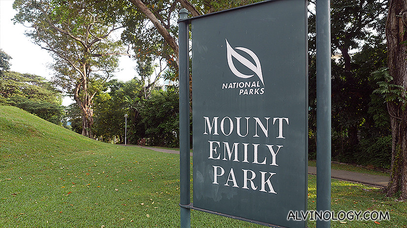 Asher and I went for a walk in Mount Emily Park early on Sat morning