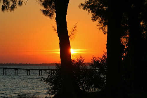 bridge trees red orange sun tree sunrise pier dock florida manatee bradenton sunray boatdock manateeriver manateecounty bradentonflorida sunnyflorida floridasun riverviewblvd manateecountyflorida photobywes manateeriversunrise