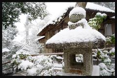 日本京都-金閣寺-雪.74