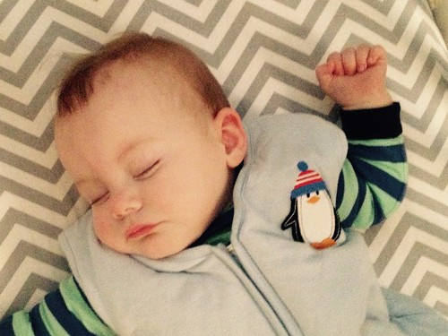 20acee489d keep your littles warm with halo winter weight sleepsack    review + ...